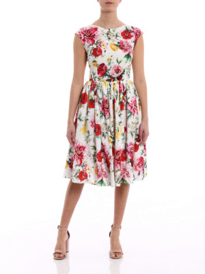 Dolce & Gabbana: cocktail dresses online - Floral print cotton dress
