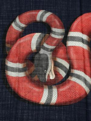 Gucci: scarves online - Snake print wool scarf