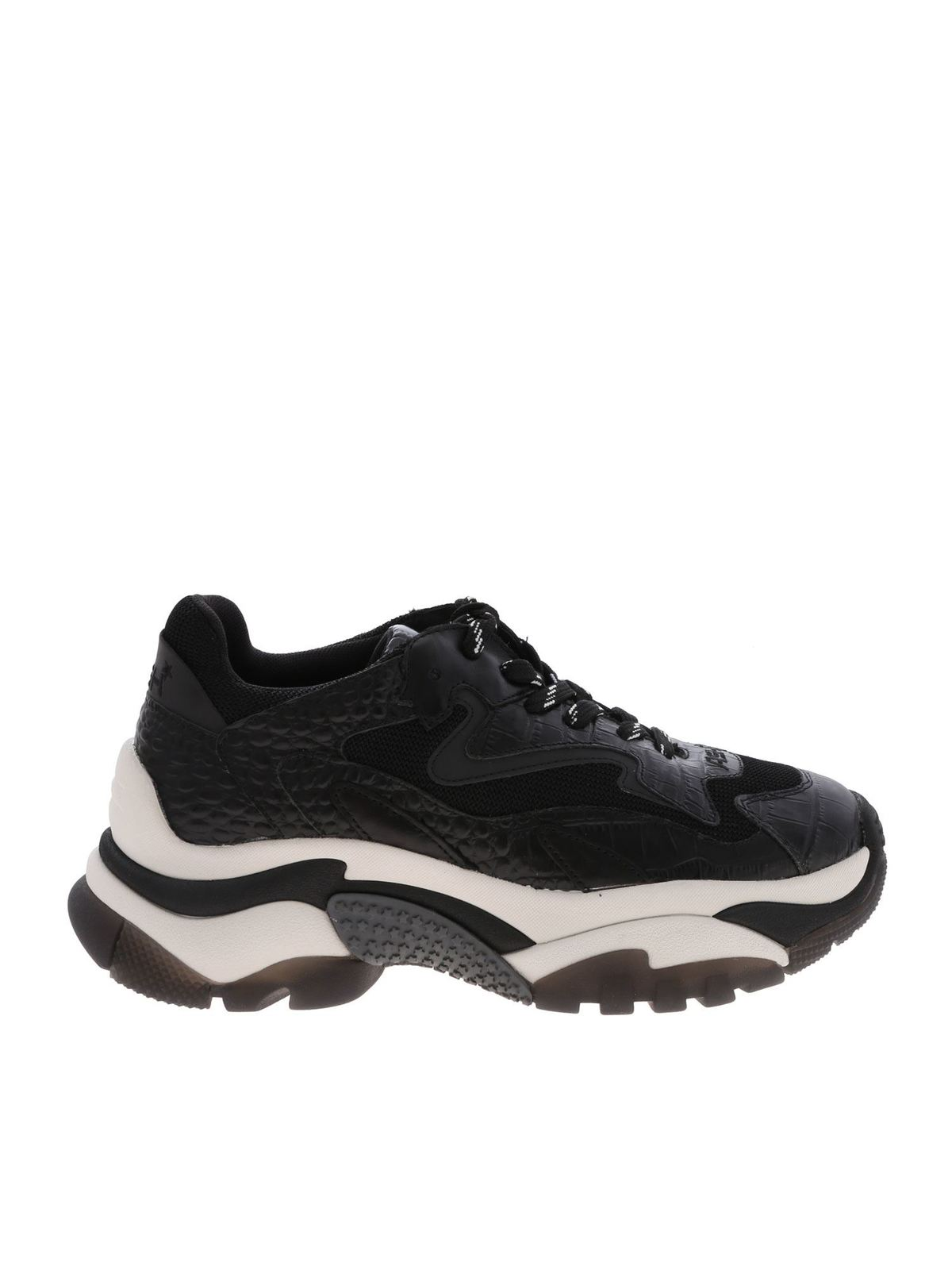 Ash Zapatillas Negro Zapatillas ADDICTFW19S126379003