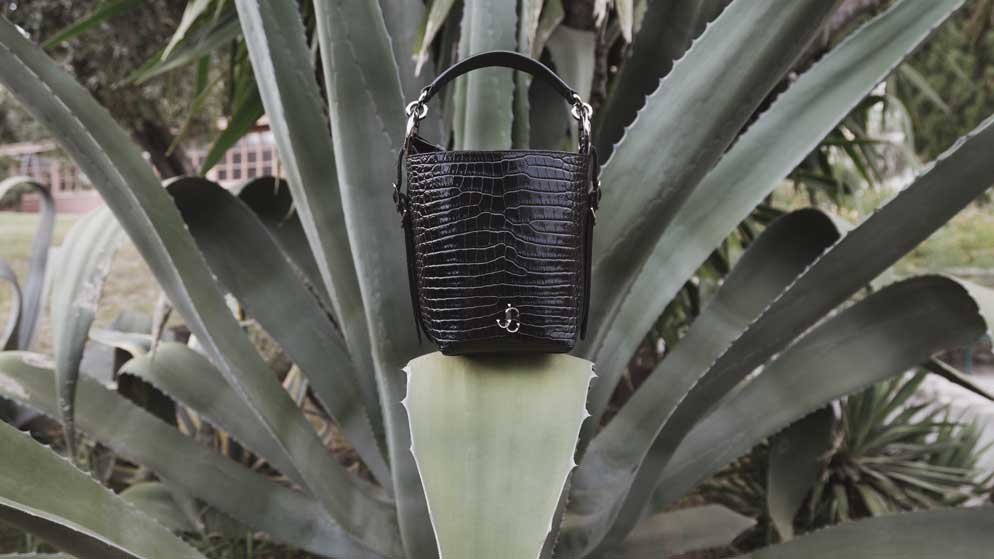 Mediterranean botany